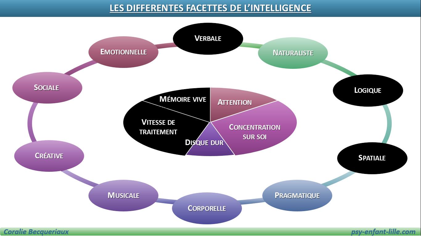 les facettes de l'intelligence mesurée par les tests de QI